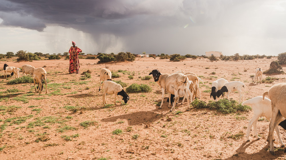 Living at the 'mercy of the rain' in Somaliland