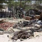 """هل ينجح الصومال في نزع السلاح """"غير الشرعي""""؟"""