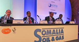 فايننشال تايمز: الحكومة الصومالية تنوي إلغاء عقود مع شركات أجنبية ردا على إتهامها بالفساد