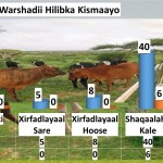تعرف على أبرز مصانع الصومال السابقة(2)