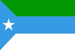 من هو الفائز في الانتخابات الرئاسية في جوبا؟