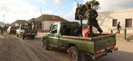اعتقال عشرين شخصا مشتبها بهم في مدينة براوى